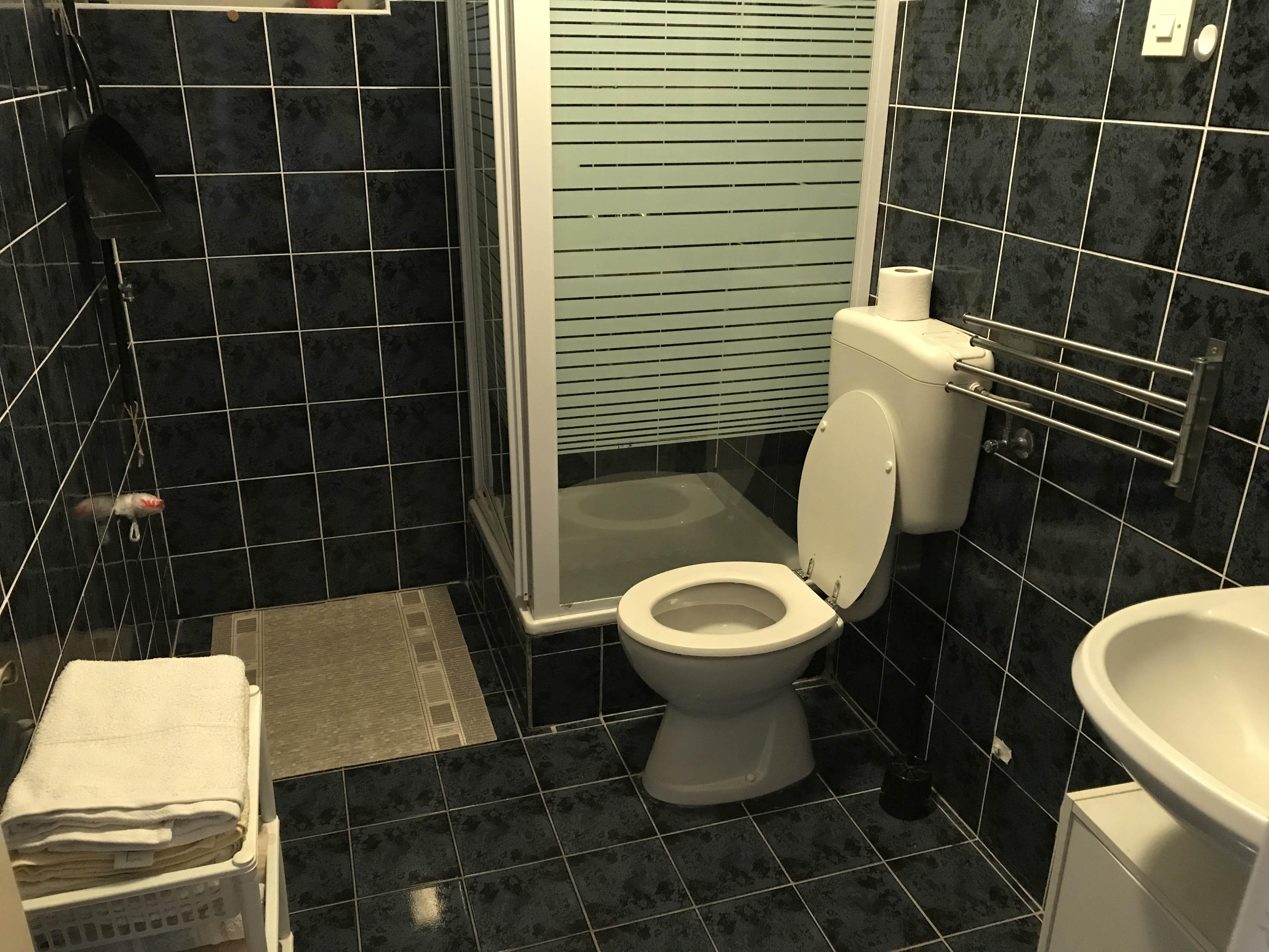 bathroom-in-apartment-2